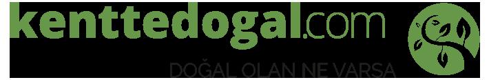kenttedogal.com